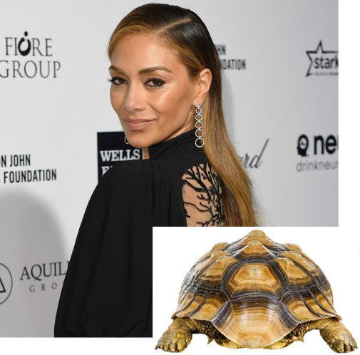Why Of Course Tortoiseshells Are The New Celeb Hair Colour
